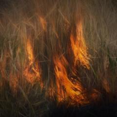 Vypaľovanie trávy vás môže vyjsť draho!!!